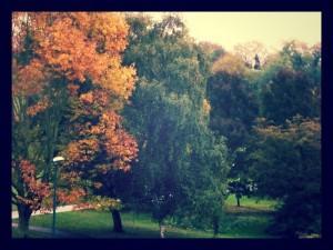 Autumn university campus UEA