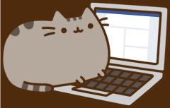 Pusheen on a computer