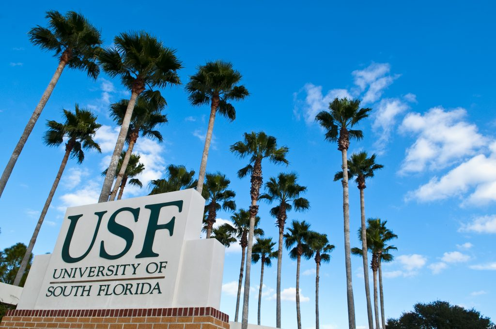 Study in Florida, USF