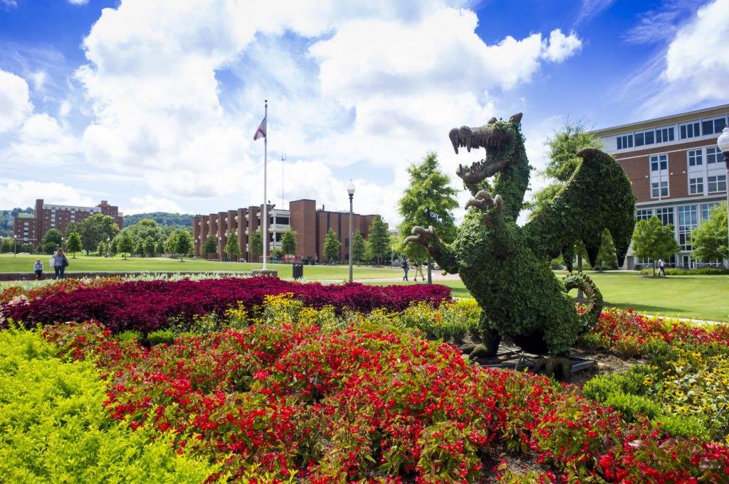 Top 5 reasons to study at The University of Alabama at Birmingham