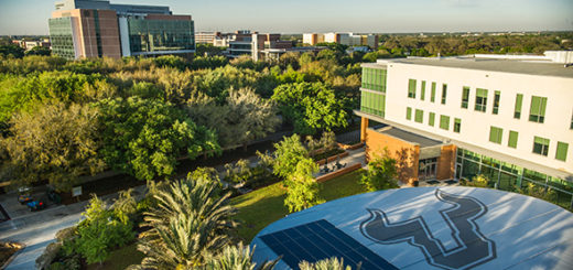 An aerial overlook of USF in the morning